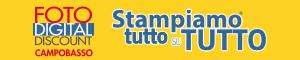 logo-fdd